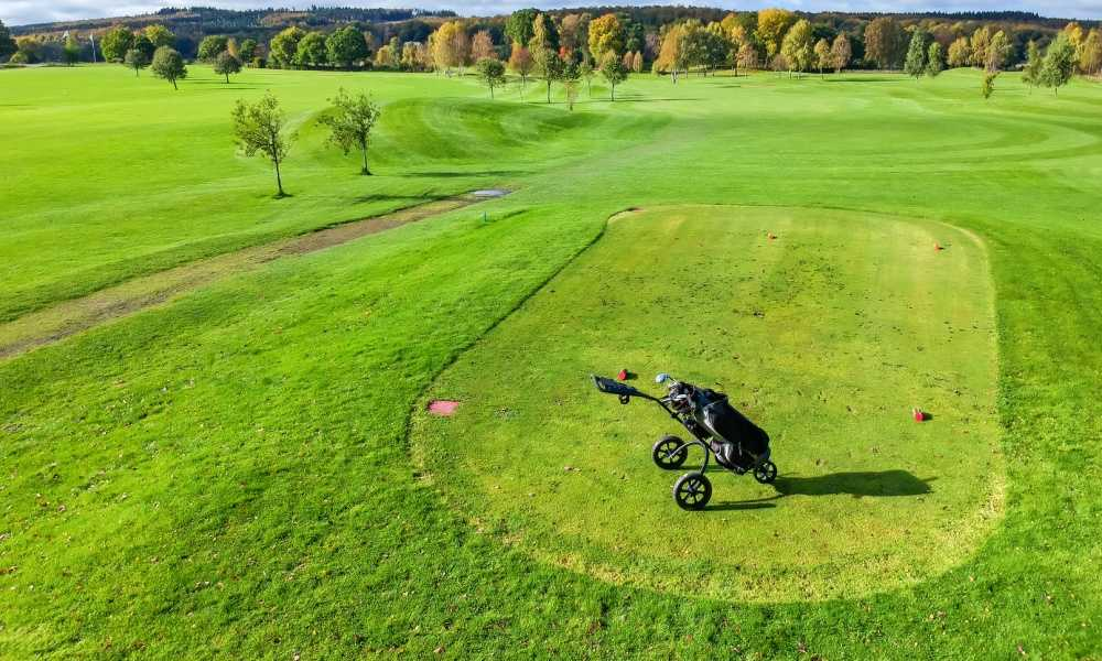 Paragon 3-Wheelie Push Pull Folding 3 Wheel Golf Push Review
